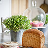 Summer Breeze brown bread, cheese, herbs and cakes